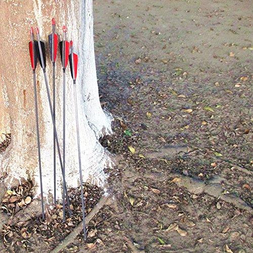 Buy aluminum arrows feather