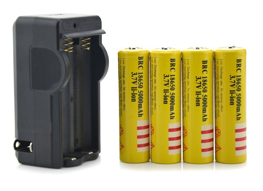 18650 5000mAh E-shinre Rechargeable 3.7v Protected BRC Battery w/PCB protection X 4 Come with 18650 Dual-Battery Digital Smart Charger