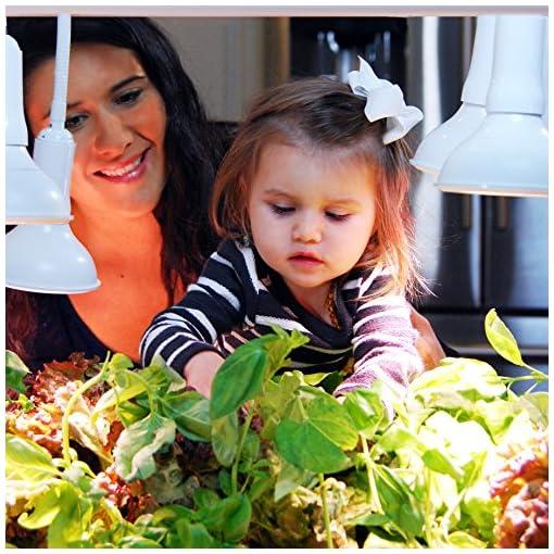 61RFVA4ho6L. SS510  - OPCOM® Farm GrowBox (High Capacity, Hydroponics, indoor garden & farm, greenhouse,Growing herb, vegetable, flower, fruit)