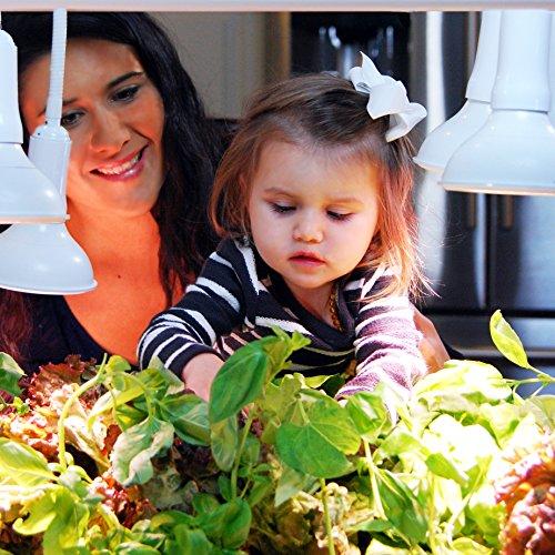 61RFVA4ho6L - OPCOM® Farm GrowBox (High Capacity, Hydroponics, indoor garden & farm, greenhouse,Growing herb, vegetable, flower, fruit)