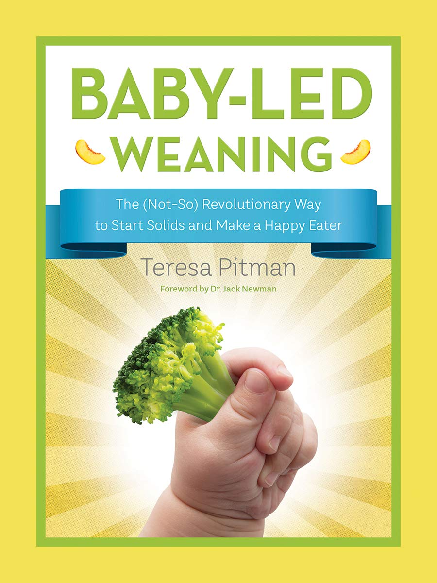 Baby led weaning 6 months foods