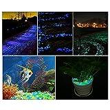 Glow in The Dark Fish Tank Aquarium Rocks,Glow