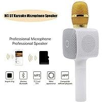 inovaxis M5 Karaoke Mikrofon