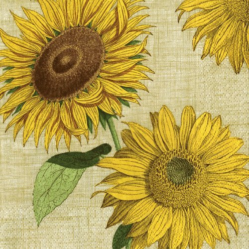 Cocktail Napkins Party Supplies Entertaining Garden Party Wedding Birthday Party Sunflowers Pk 40]()