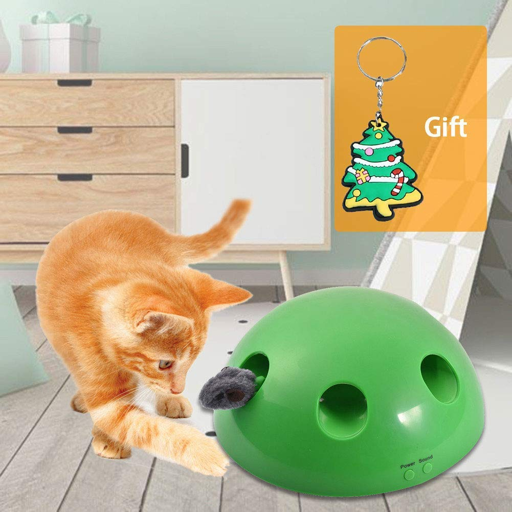 Joyleah Interactive Motion Cat Toy Includes: Electronic Smart Random Moving Feather & Mouse Teaser, Mouse Squeak Sound Optional & Auto Shut Off. The Best Pet Toy Ever by Joyleah