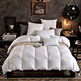 Globon Fusion Lavender Scented White Down Comforter Twin Size (68-Inch-by-90-Inch) 40oz, Down Proof Shell, 300 Thread Count, 600 Fill Power, Heavyweight For Winter with Corner Tabs,White
