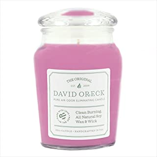 product image for David Oreck Candle Company, Sweet Pea Blossom, 22oz Original Clean Burning Odor Eliminating Candle, 120 Hour Burn Time,