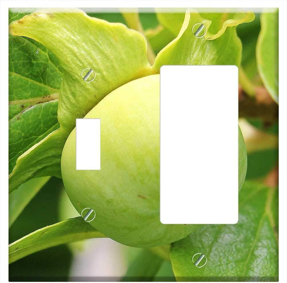 Cubierta para placa de pared – Kaki Persimmon árbol fruta exótica árbol vitaminas: Amazon.es: Bricolaje y herramientas