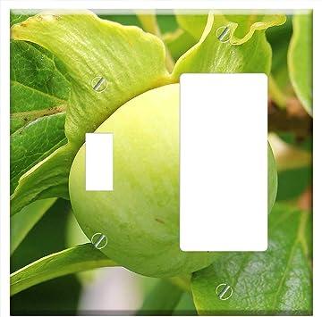 Cubierta para placa de pared – Kaki Persimmon árbol fruta exótica ...