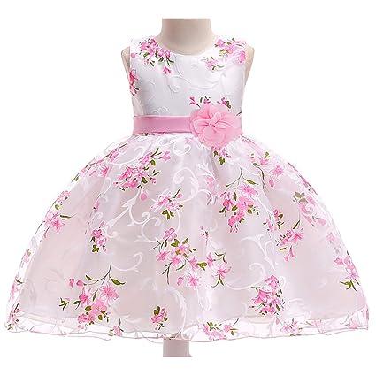 Amazon.com: Vestido de princesa para niñas, vestido de ...