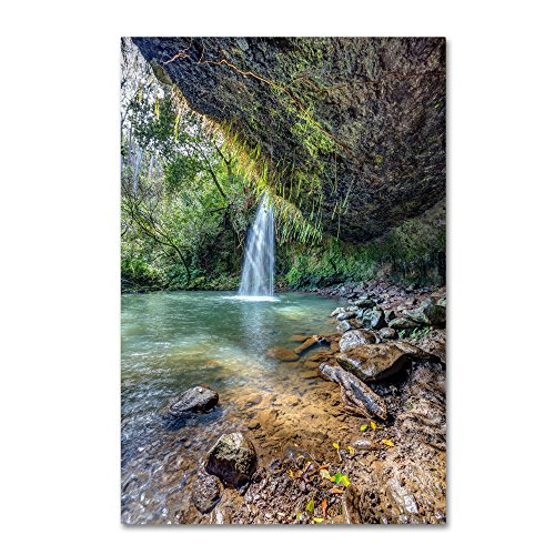 Twin Falls by Pierre Leclerc, 16x24-Inch Canvas Wall - Twin Maui Falls
