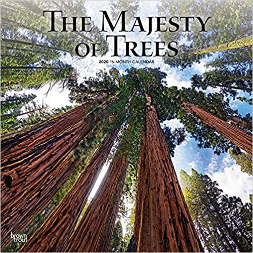 Majesty Trees 2020