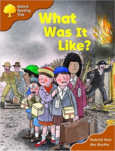 Book Oxford Reading Tree: Stage 8: More Storybooks (Magic Key): What Was It Like? by Rod Hunt (2003-09-11)