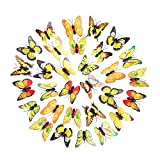 Sunyastor 30 PCS 3D Colorful Butterfly Wall Stickers DIY Art Decor Crafts for Nursery Classroom Offices Kids Bedroom Bathroom Living Room Magnets and Glue Sticker Set