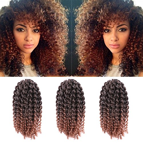 3pcs/Pack 10 Afro Kinky Twist Hair Crochet Braids Ombre Braiding Hair Synthetic Marlybob Curly Crochet Hair Pieces (T1B/30)