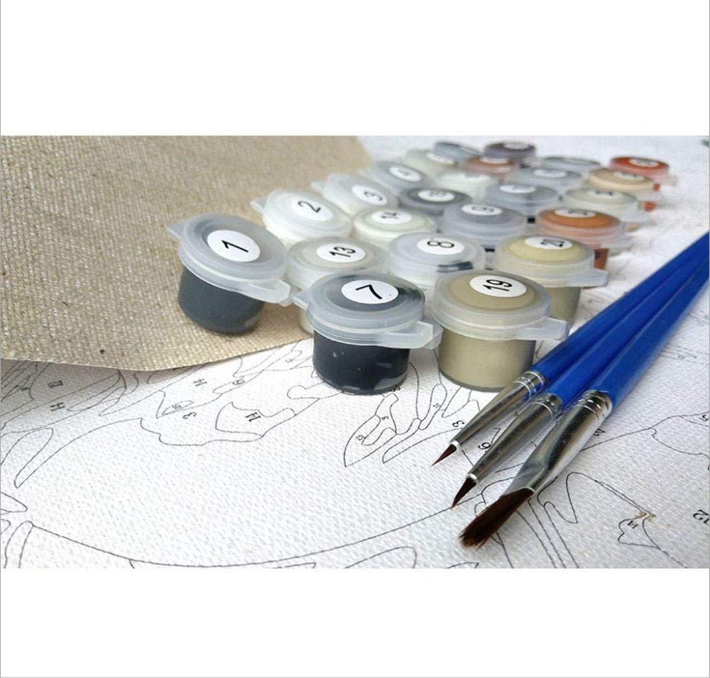 zhxx Pintar por Numeros/Adultos Brote Taza De T/é Gatito Animal DIY Grande Pintura Al /Óleo Kits Color Lienzo Facil Pincel Infantil Principiantes Sin Marco 40X50Cm