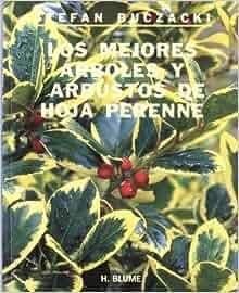 Los mejores arboles y arbustos de hoja perenne spanish for Caracteristicas de los arboles de hoja perenne