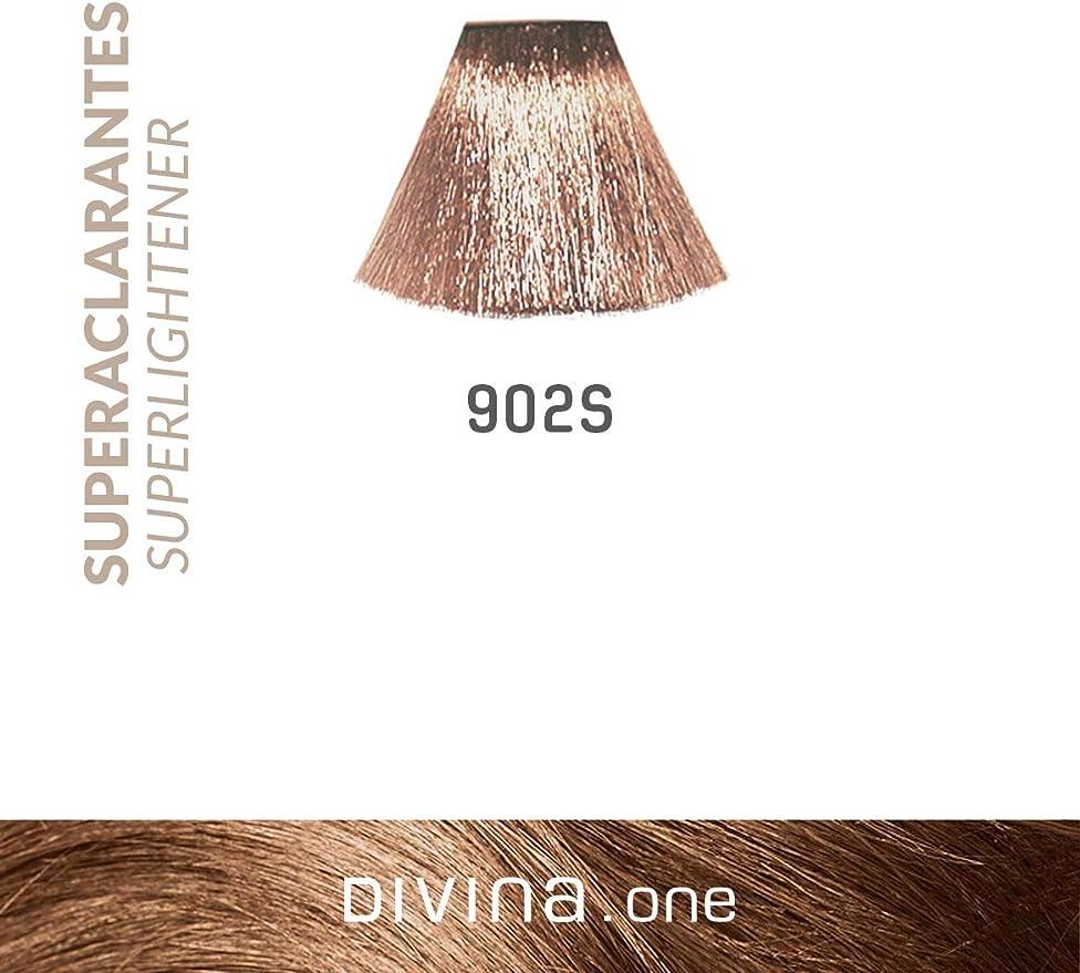 Eva Professional Hair Care Tinte Profesional Divina N.912S 60 ...