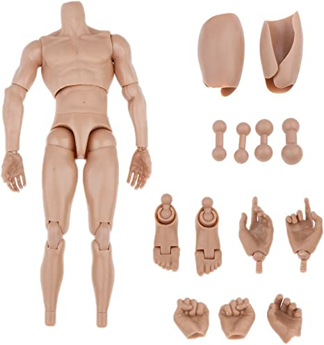 ZYAQ 1//6 Scale Action Figure Male Muscular Body Toys Doll Without Neck fits TTM18 TTM19 Hot Toys