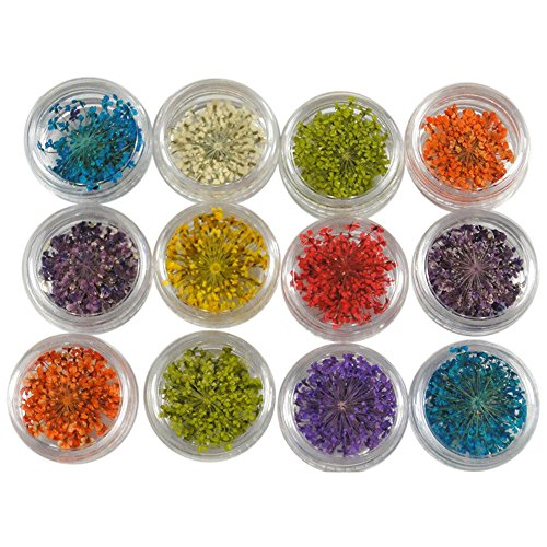 Nail Art Accessories, Babyee12 Colors 3D Decoration Real Dry Dried Flower For UV Gel Acrylic Nail Art Tips Nail Glitter Powder Shinning Nail Mirror Powder Makeup Art DIY Chrome Pigment.