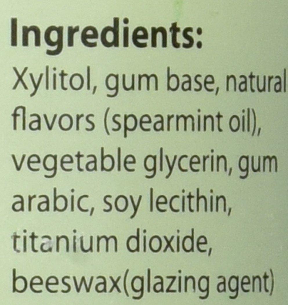 Focus Nutrition, XyloBurst Sugar-Free Xylitol Chewing Gum Jar, Spearmint - 500 Pieces