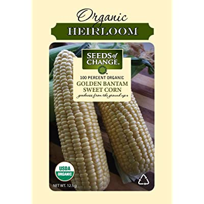 Seeds Of Change 6079 Certified Organic Golden Bantam Corn: Garden & Outdoor