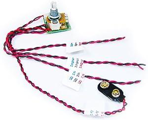 2.5-Watt Pre-Wired Amplifier Circuit Board - Great for homemade amplifiers!