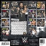 2018 WWE Wall Calendar (Mead)