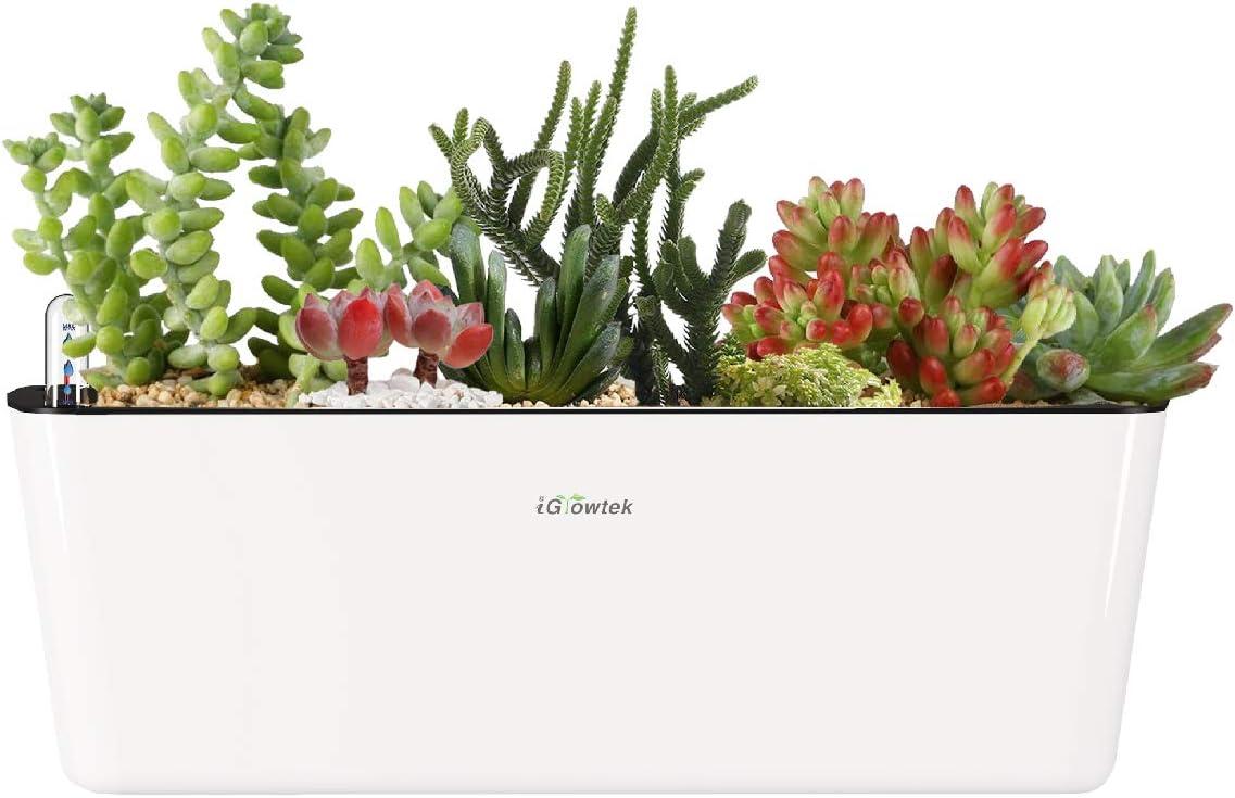 "iGrowtek Self Watering Planter,Self Watering Flower Pot, Window Box Indoor, Modern Decorative Planter Pot for Indoor Plants, White(15.6""x5.3""x5.3"")"