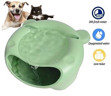DAN Fuente De Agua para Gatos - Bebedero Automático Perro Y Gato - Dispensador con Bomba Sumergible Y Fuente De Alimentación,Green: Amazon.es: Deportes y ...
