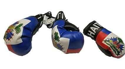Amazon.com: 3pcs Haití guante de boxeo llavero bandera Haití ...