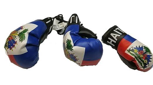 BUNFIREs 2pcs Haití de Guante de Boxeo Llavero Bandera Haití ...
