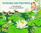 Ducklings and Pollywogs, Anne F. Rockwell, 002777452X