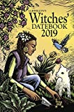 img - for Llewellyn's 2019 Witches' Datebook book / textbook / text book