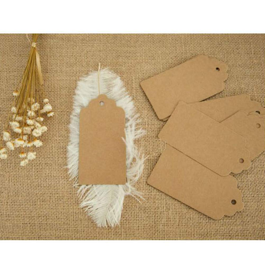 VORCOOL 120 Pcs//Pack 10x5cm Square Blank Paper Card Paper Tag with Lace Shape for Gift Tags