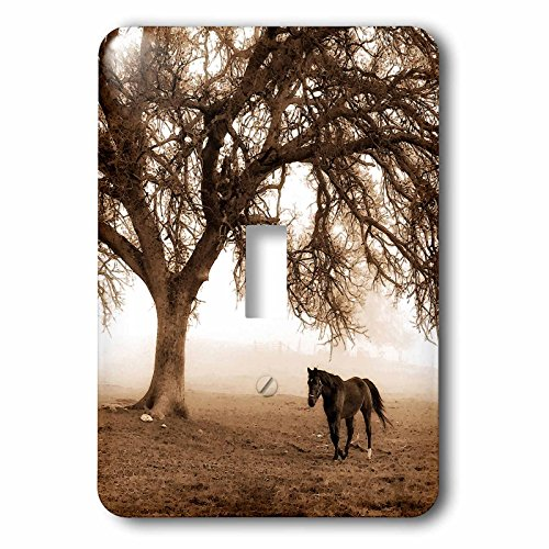 3dRose lsp_202972_1 Western Sepia Toned Horse On A Ranch with An Oak Tree - Single Toggle ()