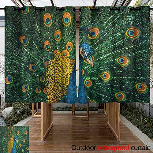 AndyTours Outdoor Blackout Curtain,Peacock,Portrait of The Peacock Courtship Display Eye Spotted Tail Tropics Natural,Waterproof Patio Door Panel,K140C100 Orange Blue Green