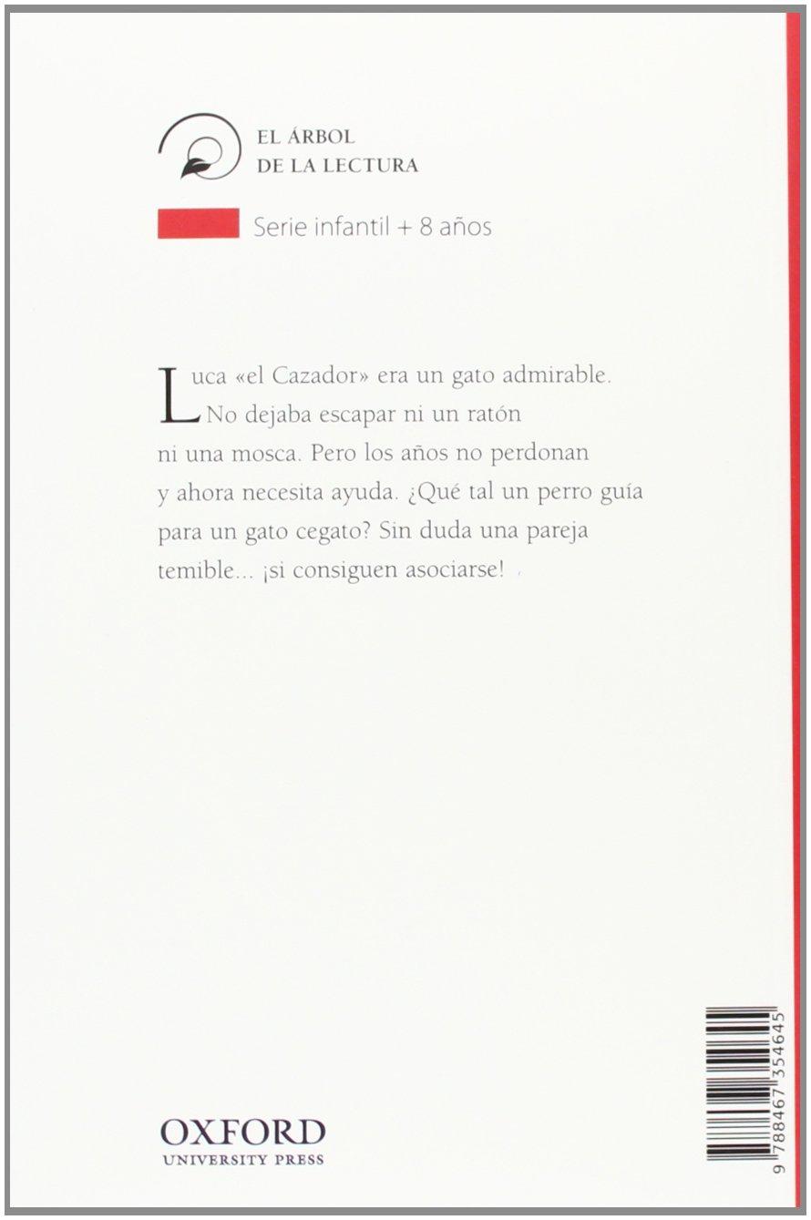 Gato cegato busca perro guía: Gisela Asensio: 9788467354645: Amazon.com: Books