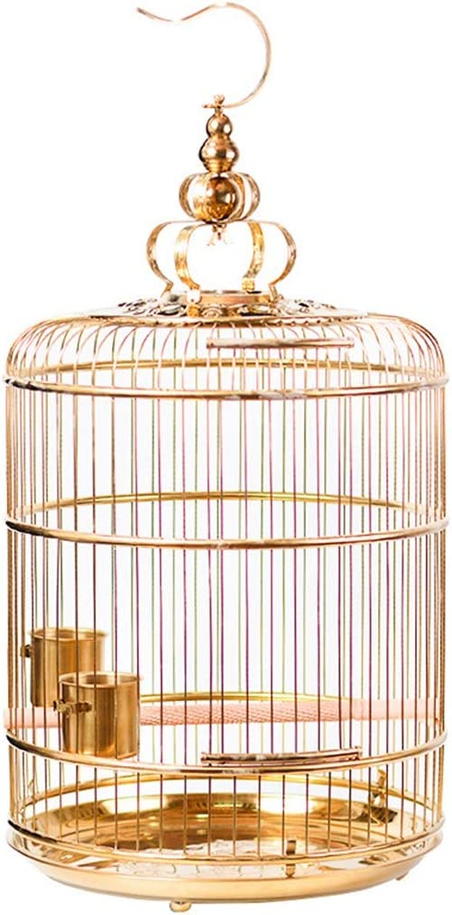 YHRJ Jaula para ninfas Jaulas para Pájaros Canarios,Jaula De Pájaros Retro Luz Dorada, Jaula De Loros De Decoración Elegante, Jaula De Pájaros De Perla De Paloma, 5 Tamaños