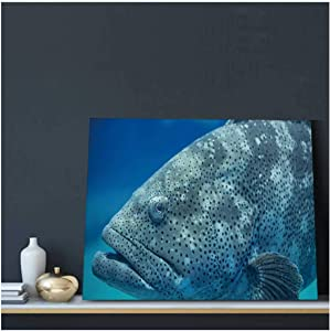 Goliath Grouper,Bedroom Decor Canvas Wall Art Prints Bathroom Abstract Pictures Modern Framed also known as