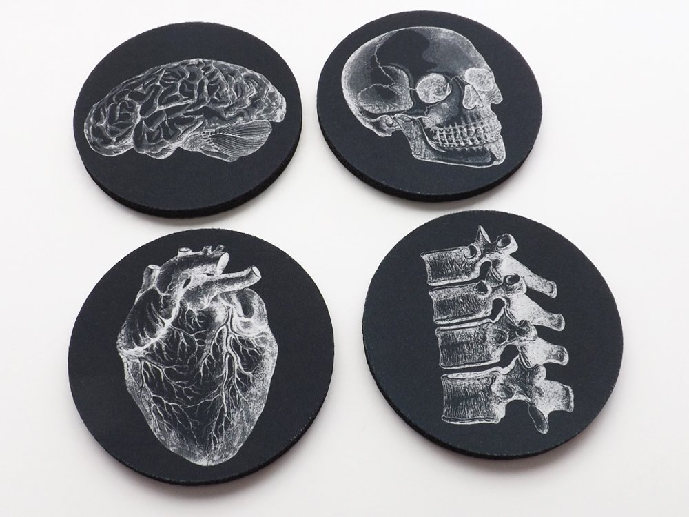 Anatomical Coasters 3.5 inch white black neoprene skull heart brain dorm room goth decor doctor male nurse gift