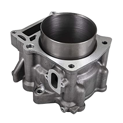 Cylinder Exhaust Valve For 2001-2008 Yamaha Grizzly Raptor Rhino 660 660R Replaces 3YF-12121-00-00