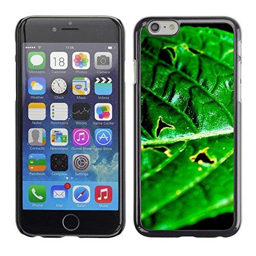 """Premio Sottile Slim Cassa Custodia Case Cover Shell // V00003161 scarabée coloré // Apple iPhone 6 6S 6G 4.7"""""""