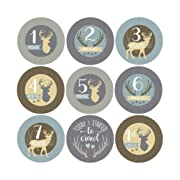 16 Deer Animal Baby Milestone Stickers, 12 Monthly Age Photo Picture Props For Boy Infant Onesie, 1st Year Belly Decals, Scrapbook Memory Registry Gift, Best Shower Basket Present, Buck Hunting Months
