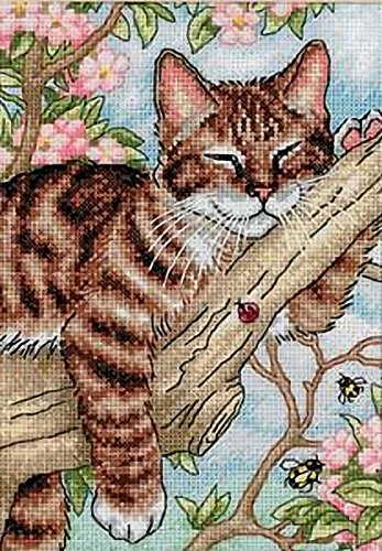 (Dimensions Gold Collection Counted Cross Stitch Kit, Napping Kitten, 18 Count White Aida, 5'' x 7'' )