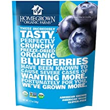 Homegrown Organic Farms Freeze Dried Blueberries 1.2 oz