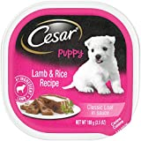 CESAR Puppy Wet Dog Food Classic Loaf in Sauce Lamb and Rice Recipe, (24) 3.5 oz. Trays