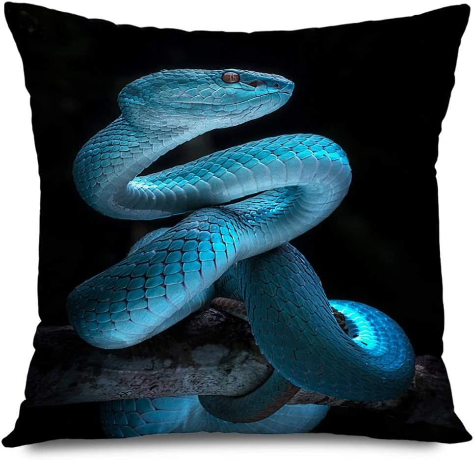 Ahawoso Decorative Throw Pillow Cover Square 18x18 Inches Viper Outdoor Snake Macro Rare Detail Wild Fast Amazonian Reptile Forest Jararaca Design Bothrops Pillow Cushion Case Home Decor Pillowcase