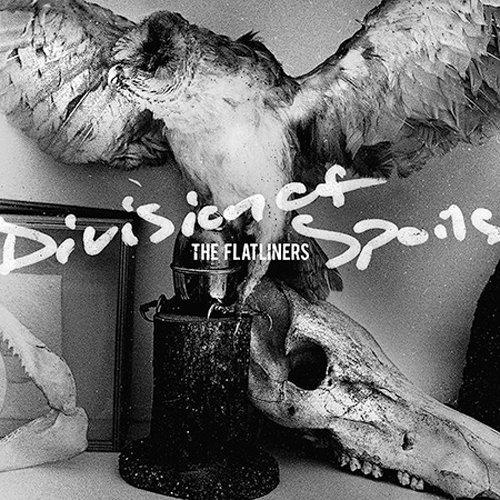 The Flatliners - Division of Spoils - Zortam Music