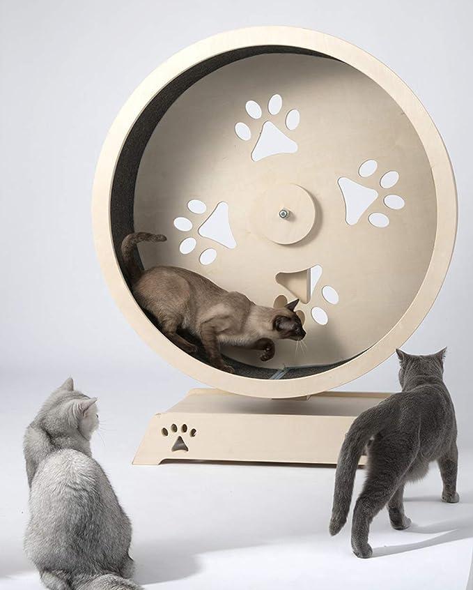 Marco de escalada para gatos cinta para correr para gatos, nido de ...